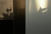 22_shadows4.jpg