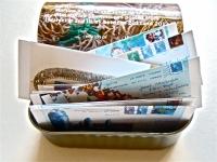 44_sardine-mini-2.jpg