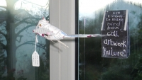 47_smallbird--box2.jpg